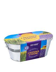 Windowsill Planter – Lavender & Thyme